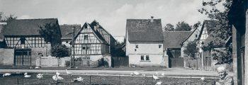 1940 – 1950